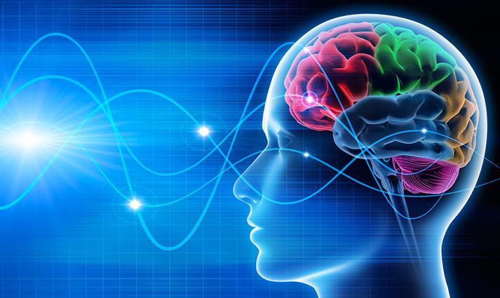 Nytt verktyg för att nå kundens hjärna
