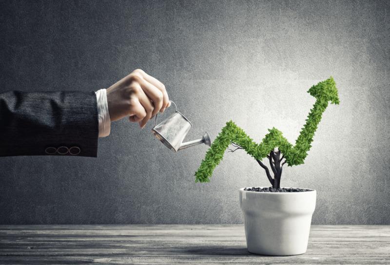 Småföretagen måste prioritera bort tillväxten
