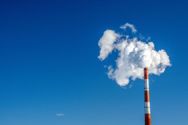 Hur mycket har svenska företag minskat sina utsläpp?